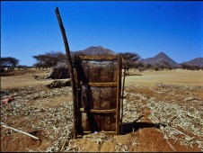 Against All Odds: The Liberation of Eritrea