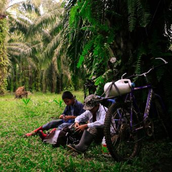 Two boys take a break on one of the farms repossessed by the Campesino Movement of the Aguan (MCA). Market demands have dictated which crops are cultivated on plantations in the region, fluctuating between bananas, coconuts, pineapples and citrus fruits, until more recently, when most of the area has been given over to palm oil trees.
