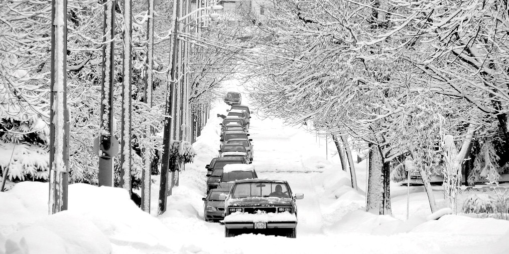Photograph of cars parked in snow to accompany Solomon Hailemariam's essay about his first Canadian winter.
